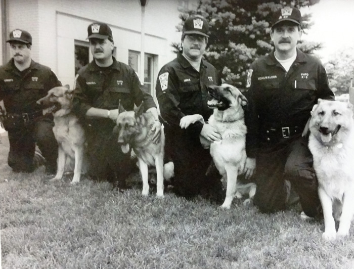 Canine Division
